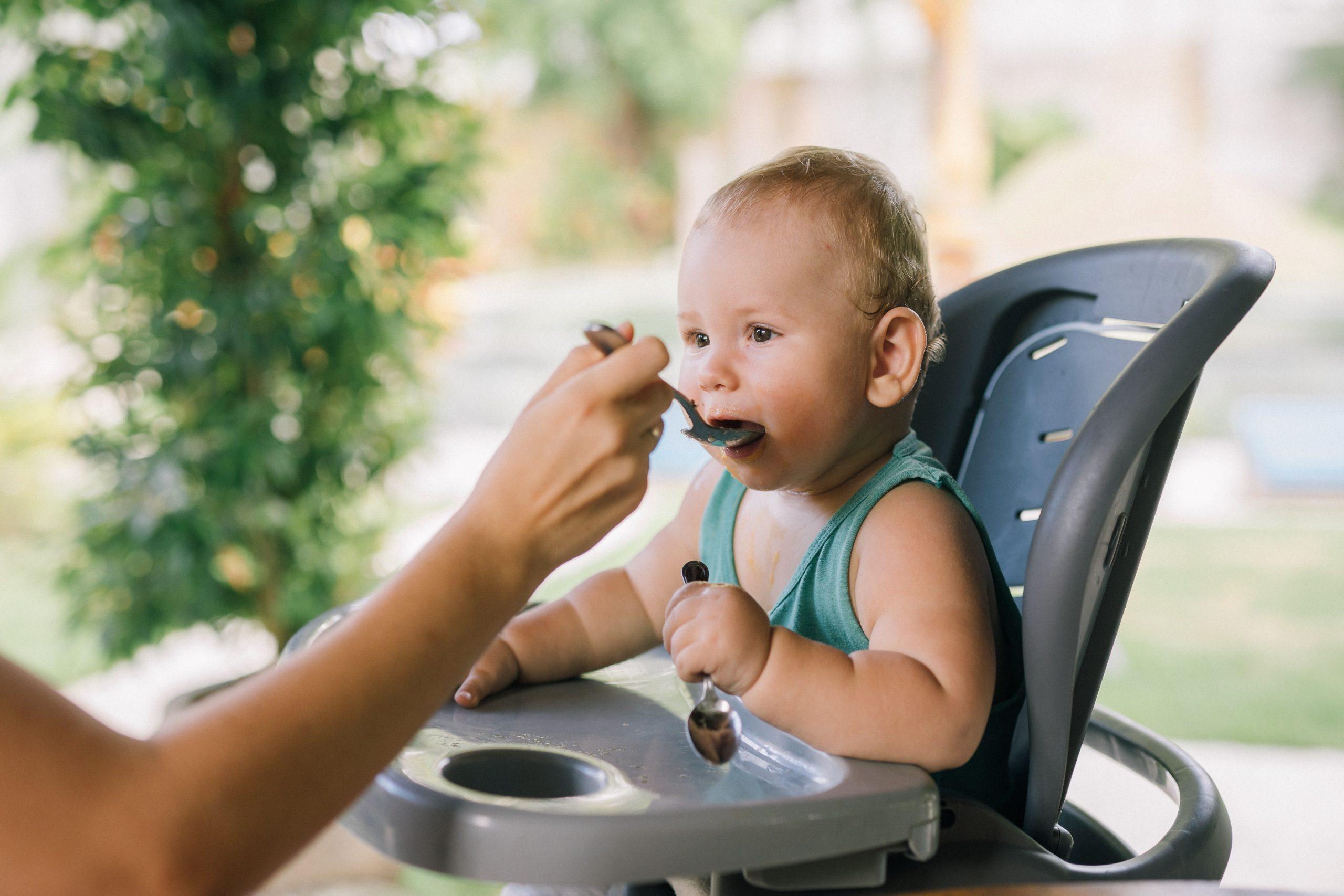 MPASI untuk Bayi