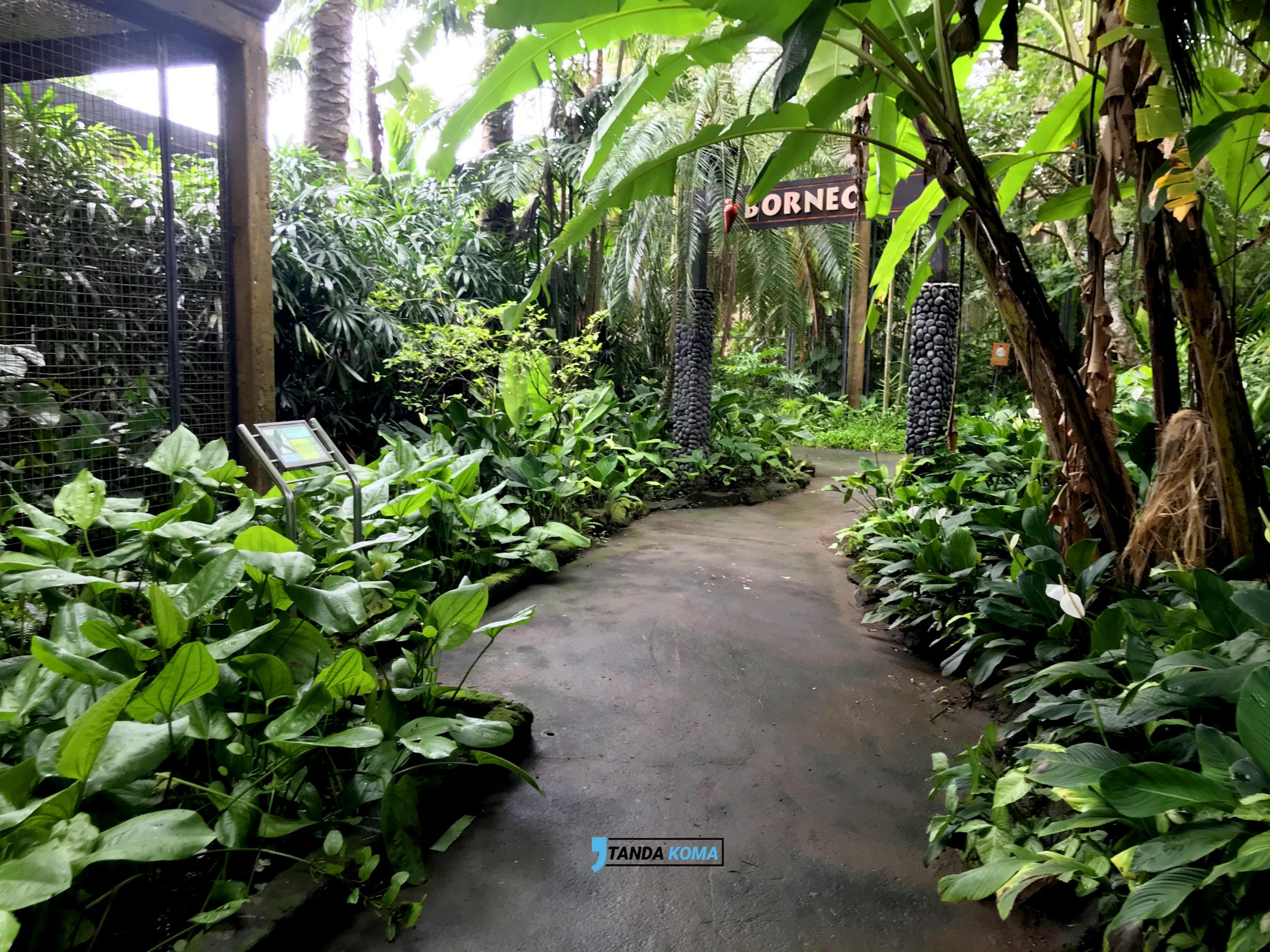 Area Zonasi Bali Bird Park
