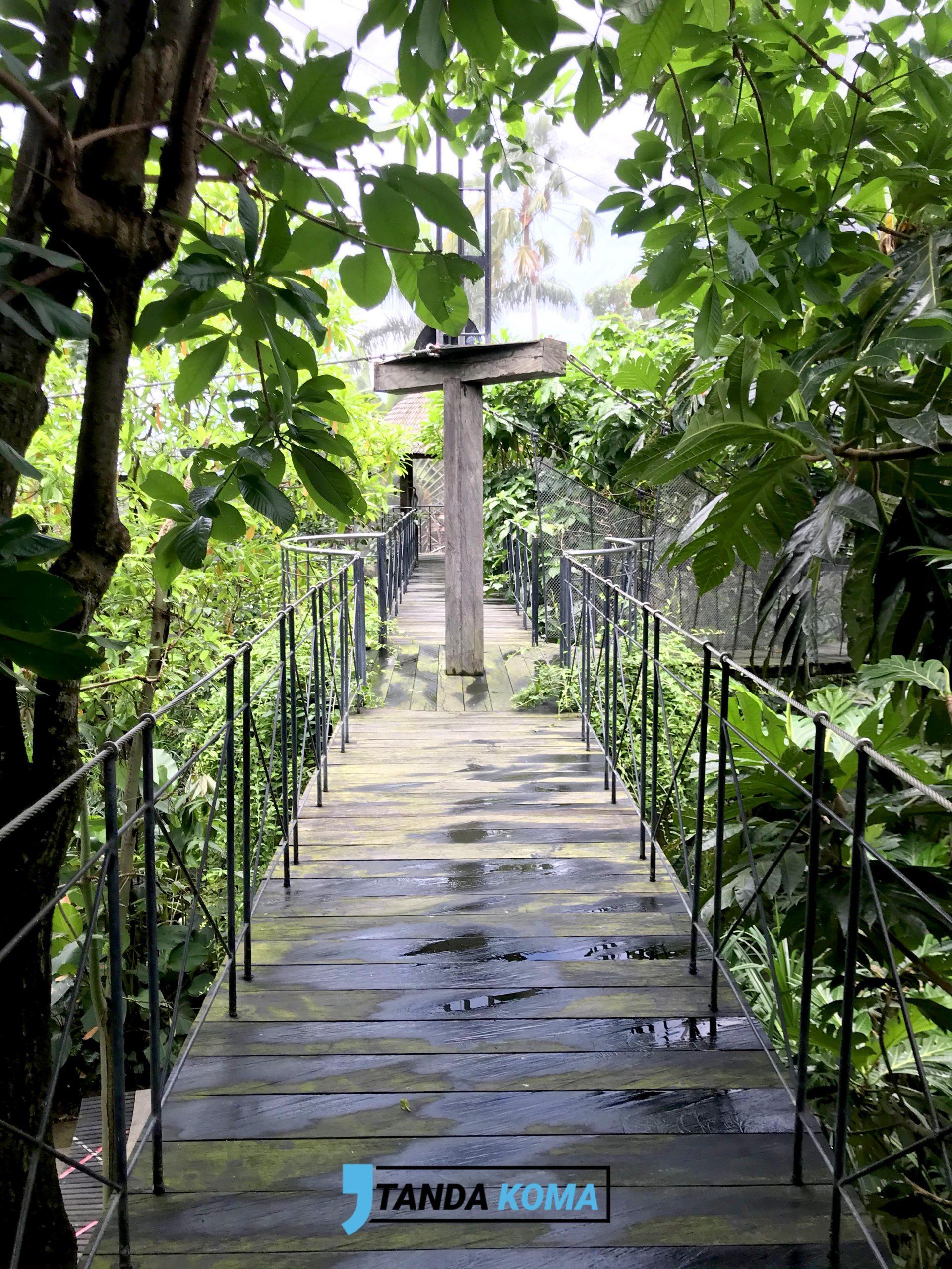 Jembatan Goyang Bali Bird Park