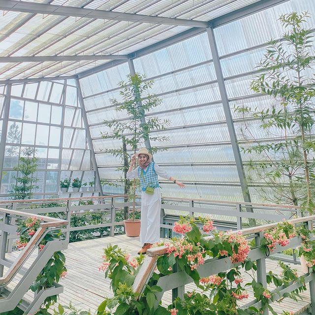 rumah atsiri green house